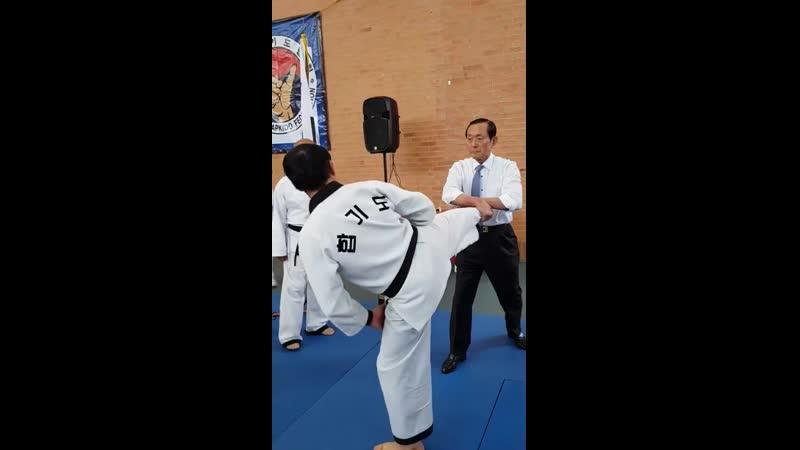 Concepts of Yop Chagi defense by President KHF Oh Se Lim