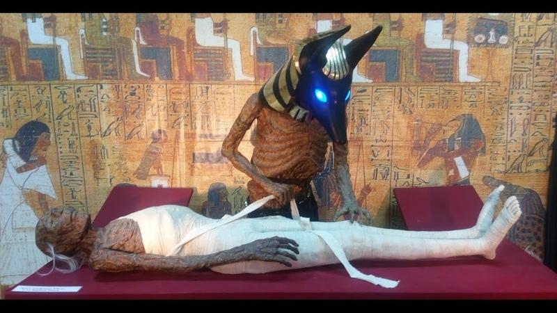 «Эти мумии не принадлежат к человеческой расе»