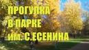 ОСЕНЬ ЗОЛОТАЯ. Прогулка в парке им.С.Есенина/Люблю Петербург