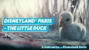 Disneyland® Paris The little duck