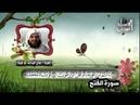 سورة الفتح الشيخ هاني عبد الله أبو شيتة. قناة أبو أسيد المدني