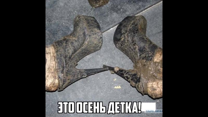 Надолго защитит Вашу одежду и обувь от грязи