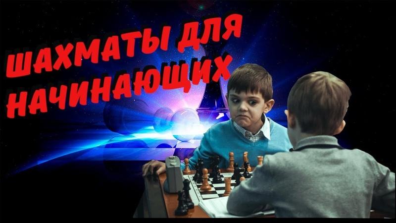 ШАХМАТЫ для начинающих.♞ Что такое шахматы? Фигуры в шахматах.