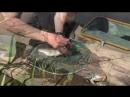 Рыбалка в подмосковье - форель