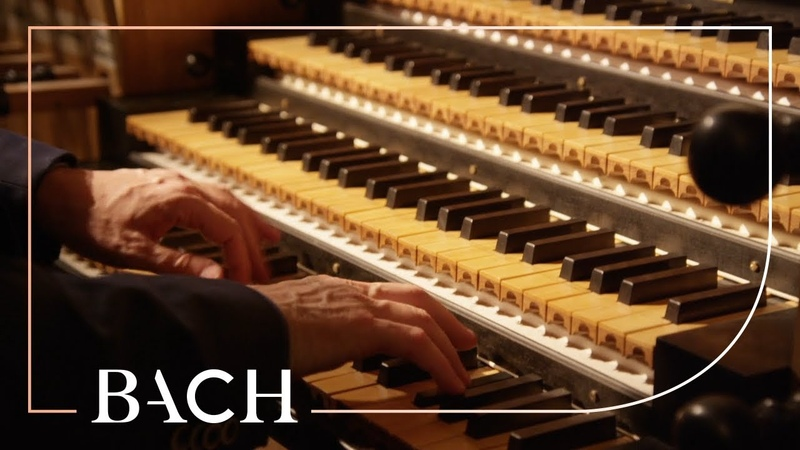 Bach - Concerto in D minor BWV 596 - Van Doeselaar | Netherlands Bach Society