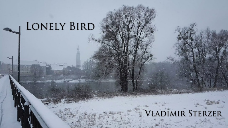 Lonely bird │ Sad piano music │ Emotional piano music │ Sad melody for piano │ Vladimir Sterzer