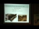 Возможности проводниковой анестезии при операциях в области головы у собак и кошек