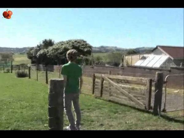 [Vietsub - S2] DVD Day and Night - SHINee part 1/6