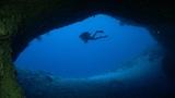 Dakuwaqa's Dream - Scuba Diving in Fiji