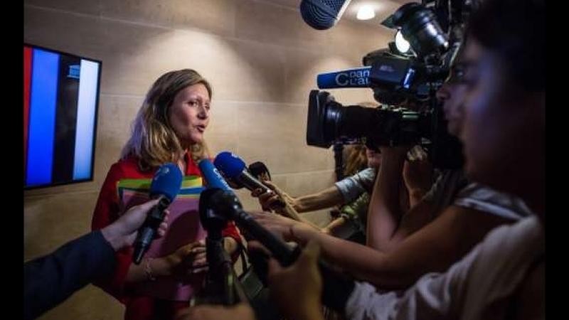 Commission d'enquête sur l'affaire Benalla si vous cherchez la reine des putes de L'Élysée voila une piste