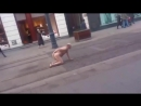 Uomo nudo in strada lecca i suoi