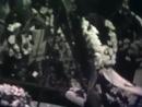Поховання Голови Проводу ОУН Євгена Коновальця [28.5.1938]