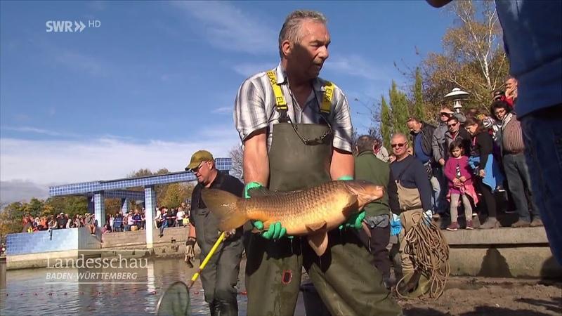 0.52 fisch Ungeheuer- фиш унгехоя рыба чудовище