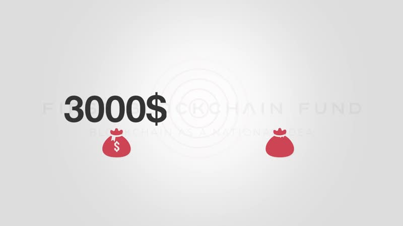 First Blockchain Fund Deutsch _ Marketingplan
