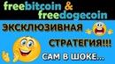 Эксклюзивная стратегия для FreeBitcoin FreeDogecoin👍