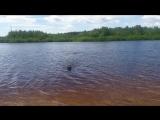 Первое купание этим летом