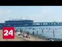 Погода 24 в Европейской России усиливается жара Россия 24