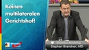 Stephan Brandner: Keinen multilateralen Gerichtshof! - AfD-Fraktion im Bundestag