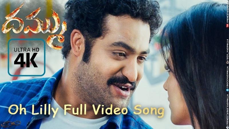 Dammu Songs | Oh Lilly Full Video Song 4K | Jr NTR | Trisha | Boyapati Sreenu | MM. Keeravaani