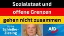 Ulrike Schielke-Ziesing (AfD) - Sozialstaat und offene Grenzen gehen nicht zusammen