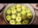 Яблоки моченые. Необыкновенный рецепт. Вариант 1.