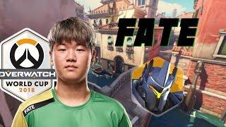Amazing Reinhardt match by Fate - South Korea vs. UK POV [Overwatch World Cup 2018]