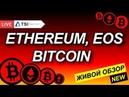Крипторынок горит что делать 🔥 Прогноз на BITCOIN BTC 2018 Эфириум EOS Новости криптовалют