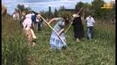 Приглашаем на кружилинские толоки Ростовская область