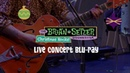 The Brian Setzer Orchestra Christmas Rocks Live on Blu ray Fishnet Stockings
