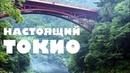 ТОКИО НЕ ДЛЯ ТУРИСТОВ. Что из себя представляет настоящий Токио