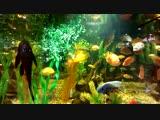 аквариум в Мармеладе