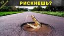 11 самых необычных опасных дорог в мире