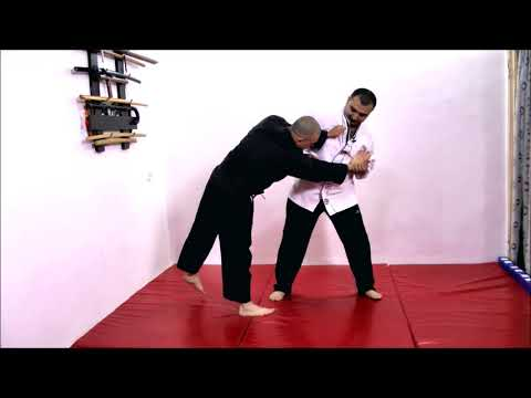 (4) Hapkido Core Concepts. Complete DVD. Free for All. 합기도