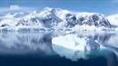 Антарктида Дикая природа В мире льда
