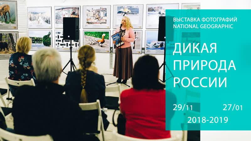 Видеоприглашение на фотовыставку «Дикая природа России» 29.11.18 - 27.01.19
