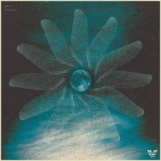 Jani R альбом Fragile (Bonus Track Version)