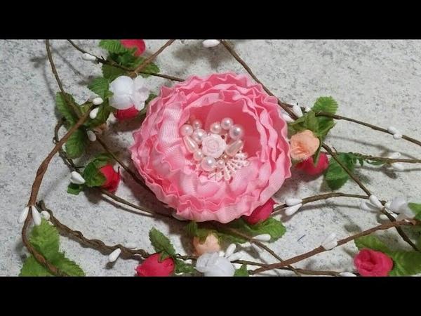 Flor capullo VIDEO No.39 curiosidades Angela peralta