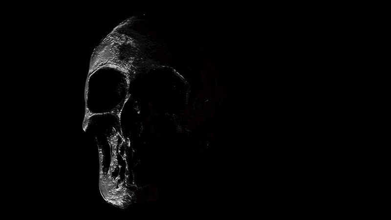 Мрачный жуткий череп ужаса / Somber macabre skull of terror
