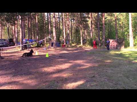 Лазвиашвили Ирина н о Гоша послушание на защите на лесных играх 2018 11.07.18