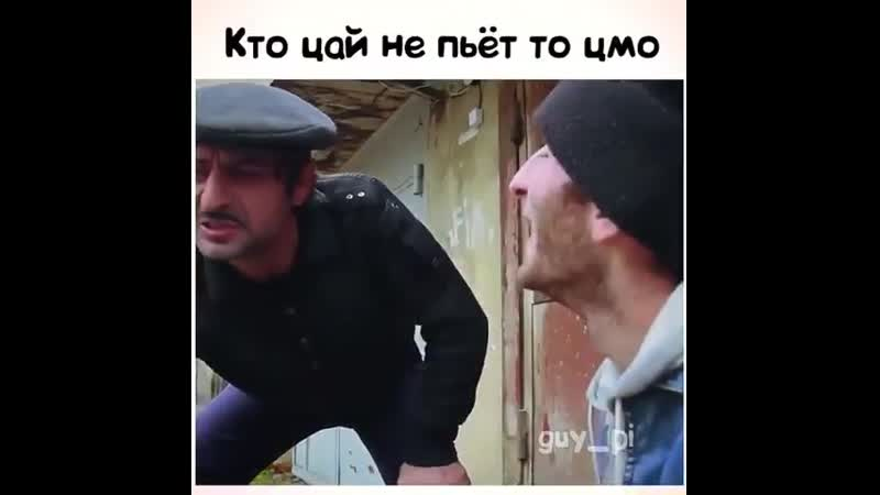 Цмо цай