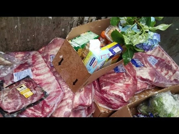 DUMPSTER DIVING ALDI DAILY VIDEO 53
