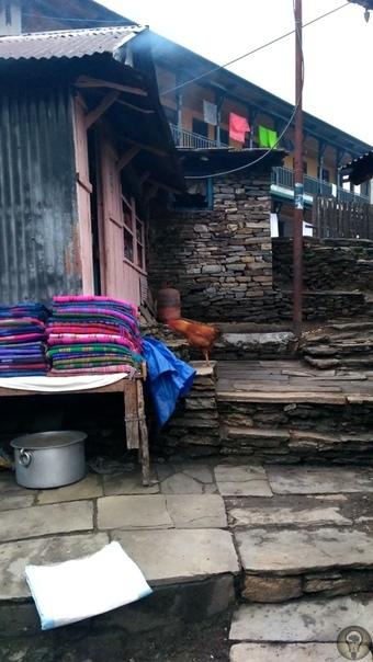 Непальские приключения: красота Гималаев VS Горная болезнь. День 4 Пун-Хилл Горепани Тадапани (2630) Всё, что я помню о ночлеге в Горепани это жуткий холод. Вечером, прежде чем упаковаться в