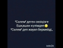VID_107220203_074729_372.mp4