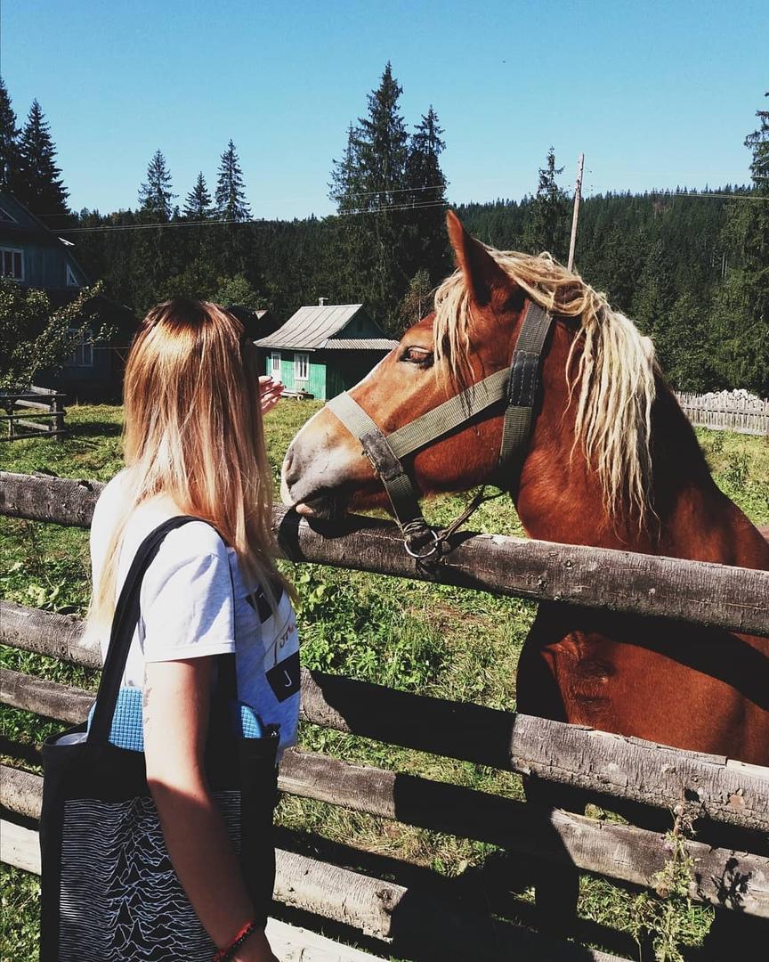 Обои Проволока, спина, лошади, дождливый, свитер, забор, холмы. Разное foto 14
