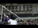американский женский волейбол
