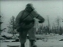 1943 год -высадка западных союзников в италии