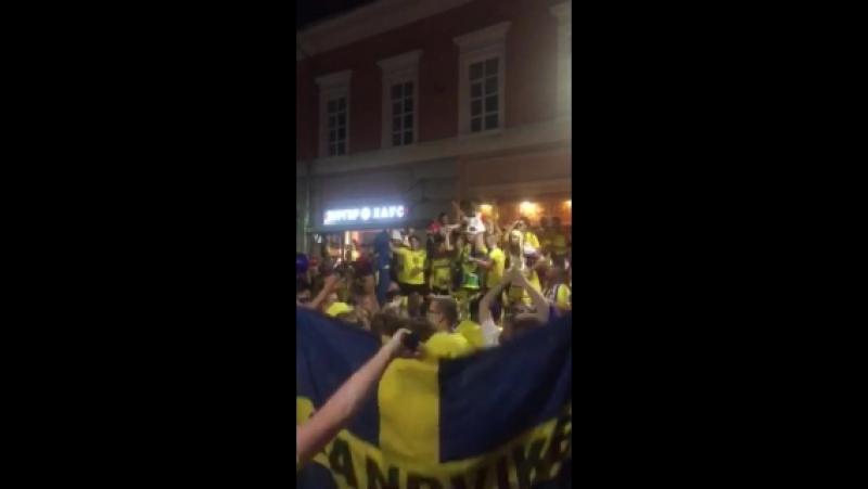 Шведы гуляют на покре