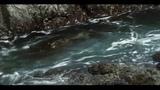 Caribou - Irene (HD)