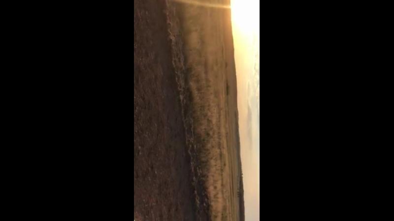 Қарағанды обл. Бұқар жырау асы. 18-08-2018жж 31-км. Аламанды ұтқан ,, Бұиражал