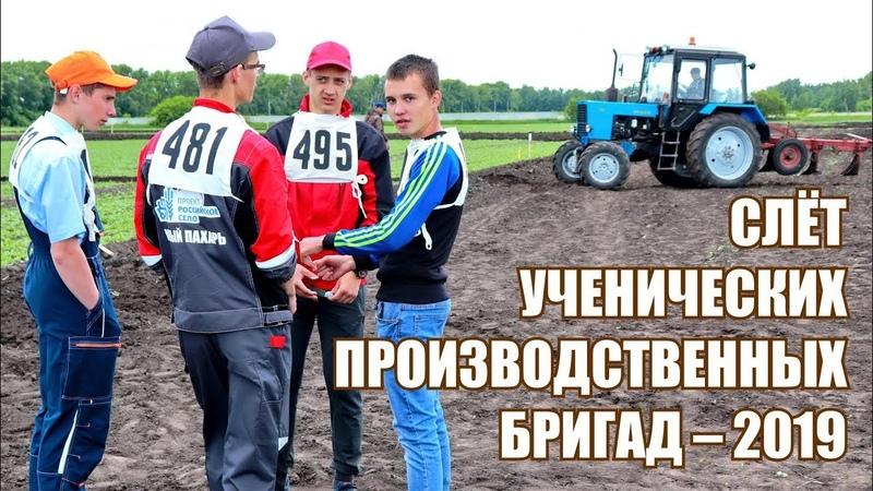 ХХVI Областной слет ученических производственных бригад - 2019